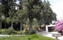 Park and botanical gardens Mata Nacional dos Sete Montes, Tomar