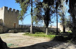 Castle of Torres Novas