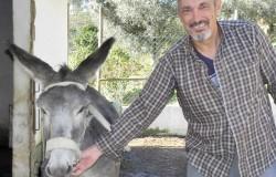 Segredos de Aldeia Donkey rides